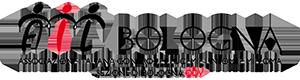 Doni Solidali AIL Bologna
